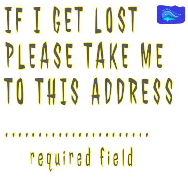 if i get lost
