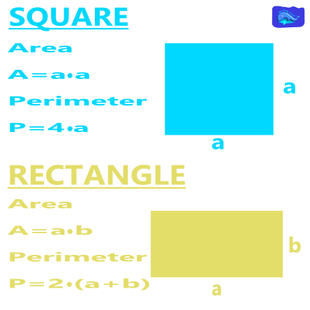 Math designs: square and rectangle