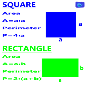 square and redctangle