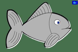 Simple fish graphic art, fishing design