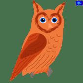 Owl graphic design