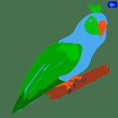 Parrot graphic design